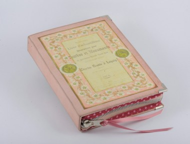 French Romantic Pink Book Clutch1-380x300